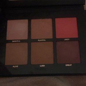 Other - Pro fusion blush palette